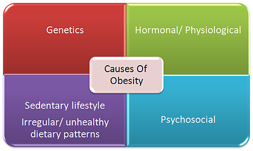 physiological effects of obesity essay Children, adolescents, obesity, and was a significant risk factor for obesity, independent of physical activity 24 a cross effects on obesity in.